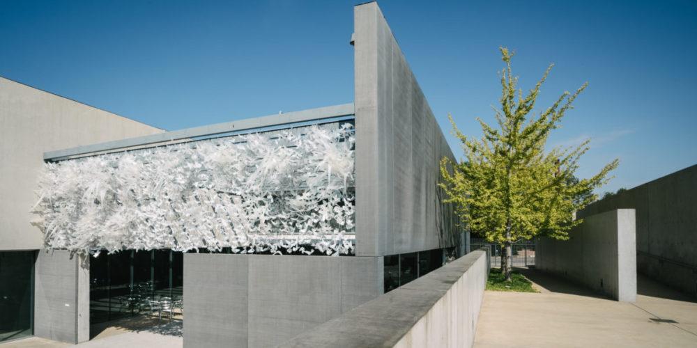 <em>Hedge</em>, installation view, Contemporary Art Museum St. Louis, September 8–December 31, 2017. Photo: Dusty Kessler.