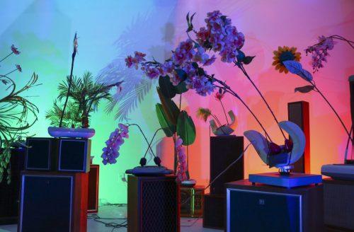Rachel Youn,<em> Gather</em>, artist rendering, 2020. Massagers, artificial plants, speaker cabinets, sound. Courtesy the artist.