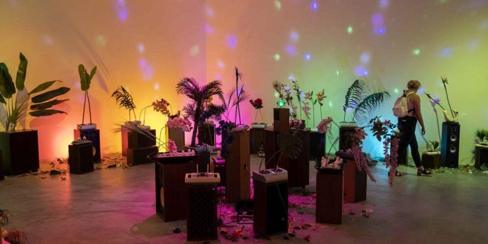 <em>Rachel Youn: Gather</em>, Great Rivers Biennial 2020, installation view, Contemporary Art Museum St. Louis, September 11, 2020—February 21, 2021. Photo: Will Driscoll.